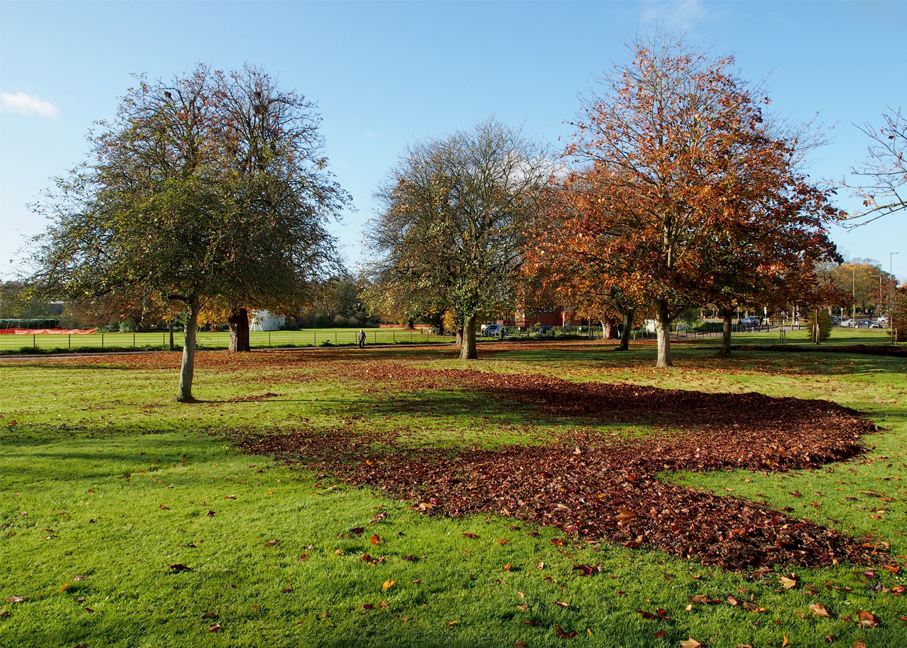 November - Heath Park - Kevin Grace