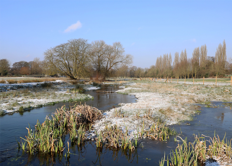February - River Bulbourne - Vicky Sinclair